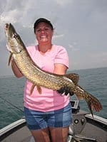 fish Christina 32 inch Pike